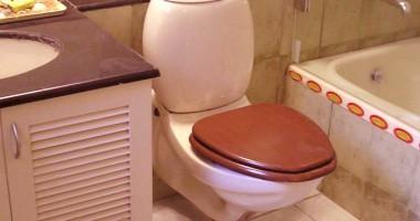Metodi naturali per eliminare cattivi odore bagno ufficio