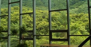 Come pulire vetri veranda
