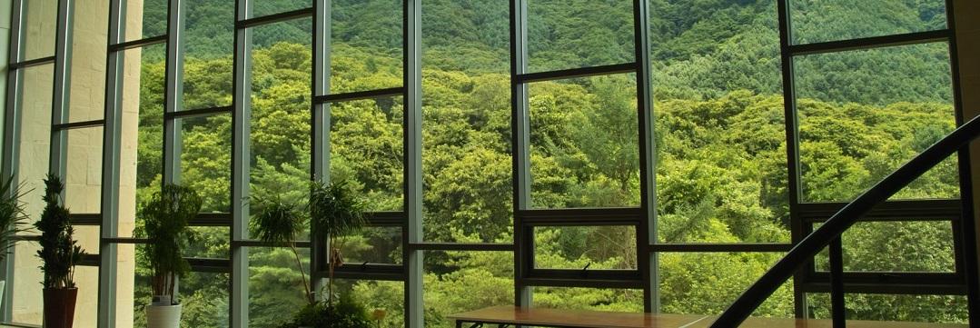 Prodotti migliori per pulire i vetri della casa - Prodotti per pulire casa ...